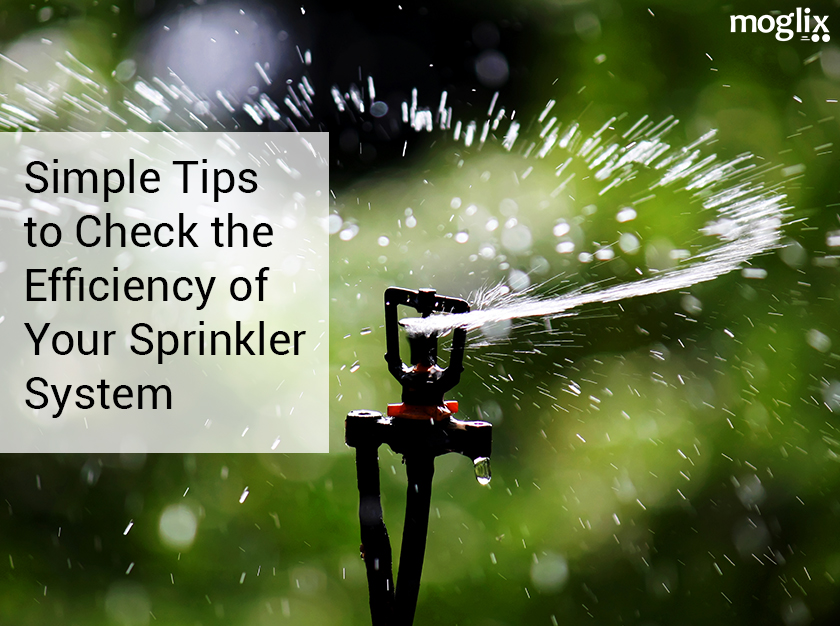Simple Tips to Check the Efficiency of Your Sprinkler System