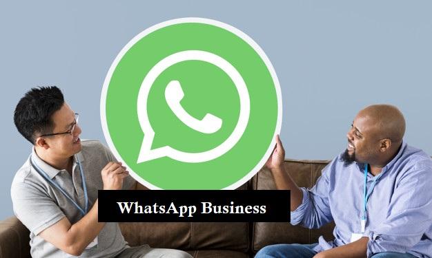 SME whatsapp business