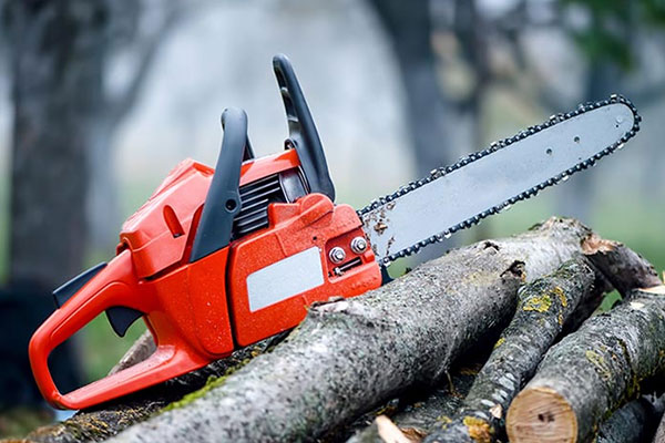 Buying Guide for Gas Chainsaw