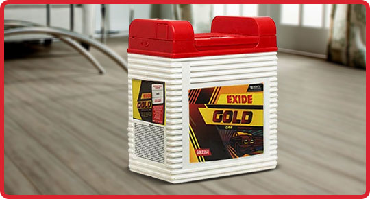 Exide Golf Battery