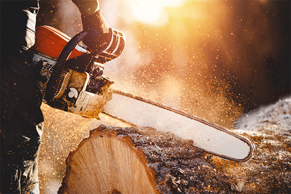 Maintenance-Tips-for-Chain-Saw (1)